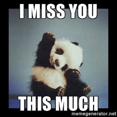 """17 of the Best """"I Miss You"""" Memes (Top Mobile Trends)  17 of the Best ..."""
