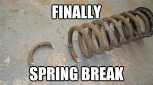 spring break pun meme